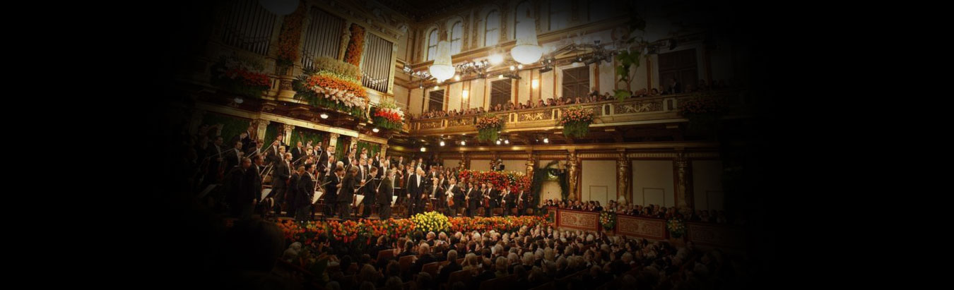 A Viennese New Year's