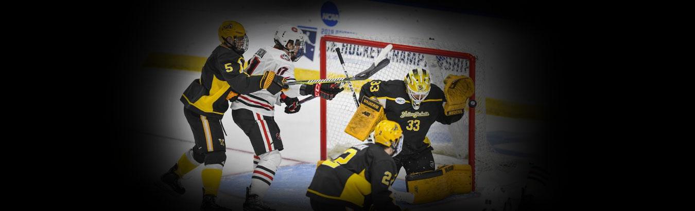 American International Yellow Jackets Hockey